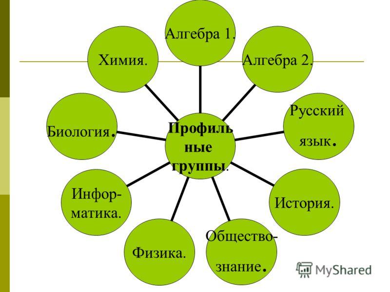 Профиль ные группы. Алгебра 1.Алгебра 2. Русский язык. История. Общество- знание. Физика. Инфор- матика. Биология.Химия.