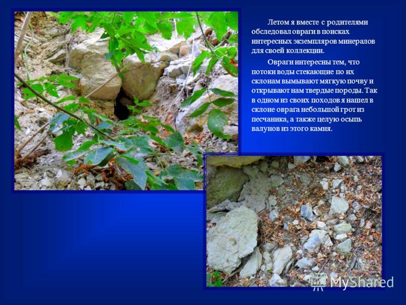 Летом я вместе с родителями обследовал овраги в поисках интересных экземпляров минералов для своей коллекции. Овраги интересны тем, что потоки воды стекающие по их склонам вымывают мягкую почву и открывают нам твердые породы. Так в одном из своих пох