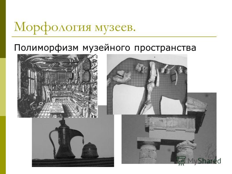 Морфология музеев. Полиморфизм музейного пространства