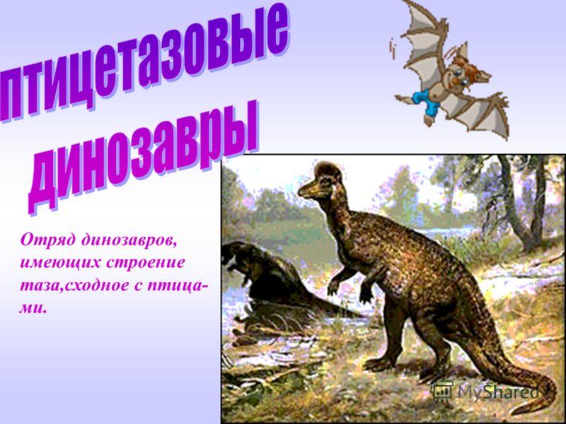 Отряд динозавров, имеющих сходное с ящерами строение таза.