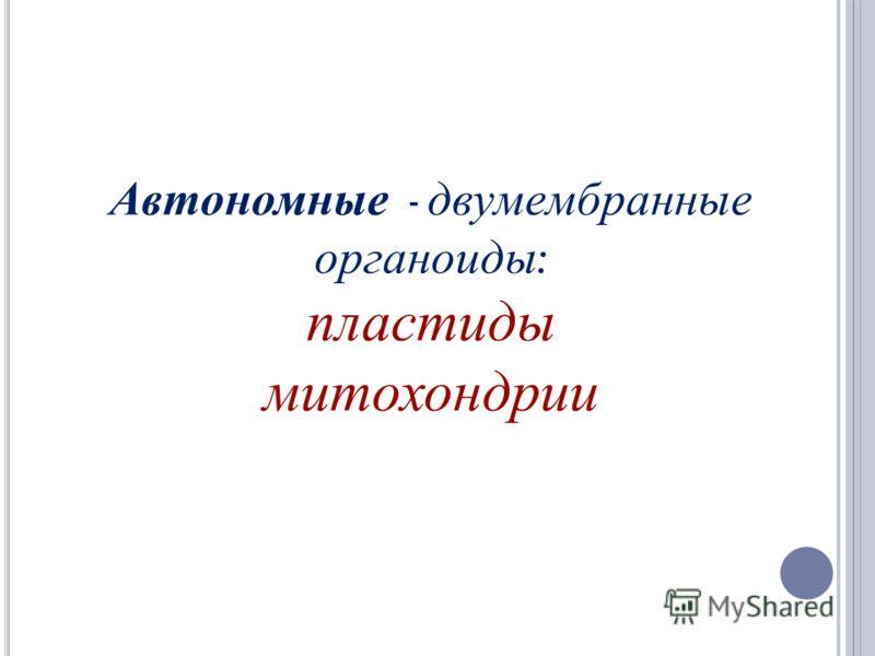 Автономные - двумембранные органоиды : пластиды митохондрии