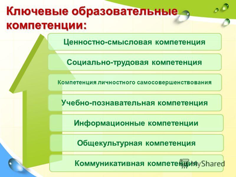 Ключевые образовательные компетенции: Ценностно-смысловая компетенция Социально-трудовая компетенция Компетенция личностного самосовершенствования Учебно-познавательная компетенция Информационные компетенции Общекультурная компетенция Коммуникативная