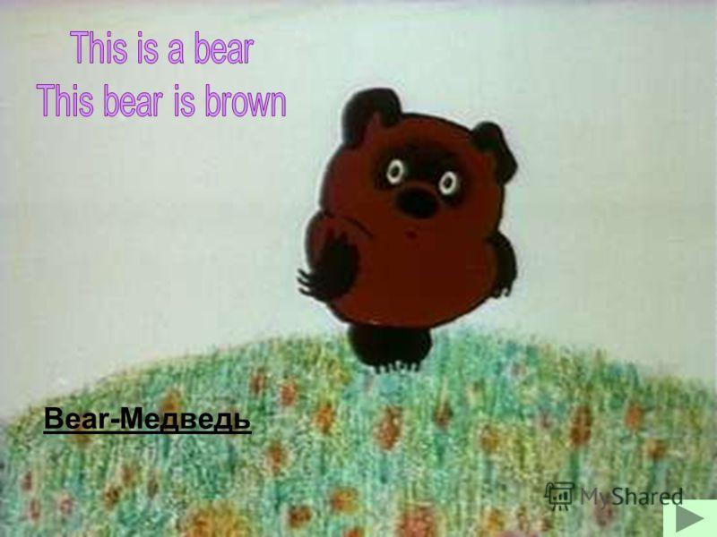 Bear-Медведь