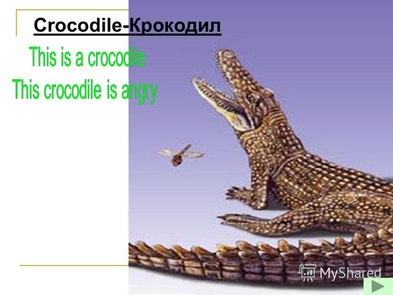 Crocodile-Крокодил