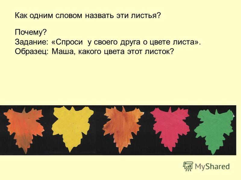 Как одним словом назвать эти листья? Почему? Задание: «Спроси у своего друга о цвете листа». Образец: Маша, какого цвета этот листок?