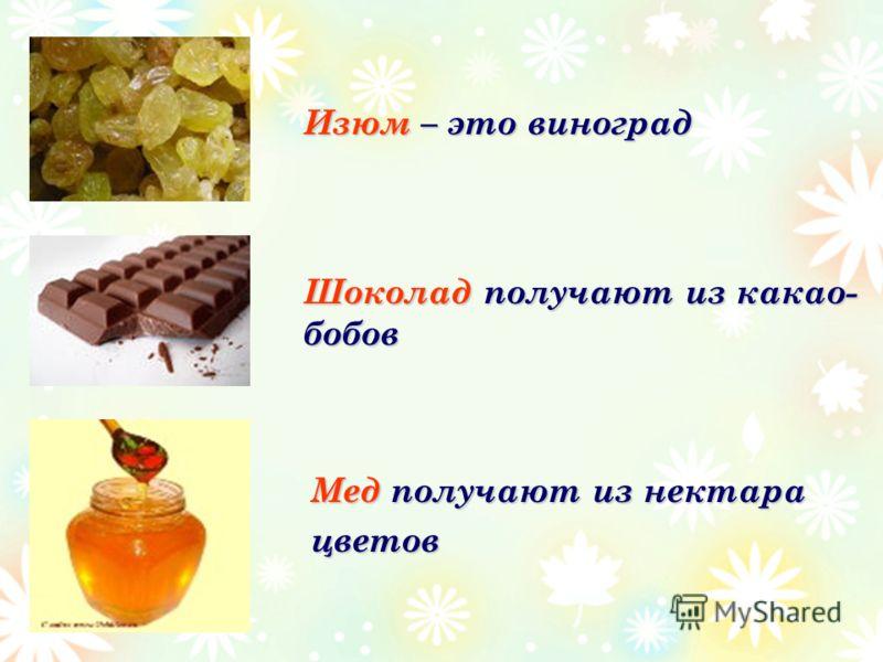 Мед получают из нектара цветов Изюм – это виноград Шоколад получают из какао- бобов
