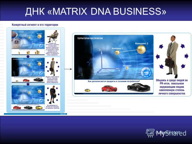 © Matrix 2007 ДНК «MATRIX DNA BUSINESS»