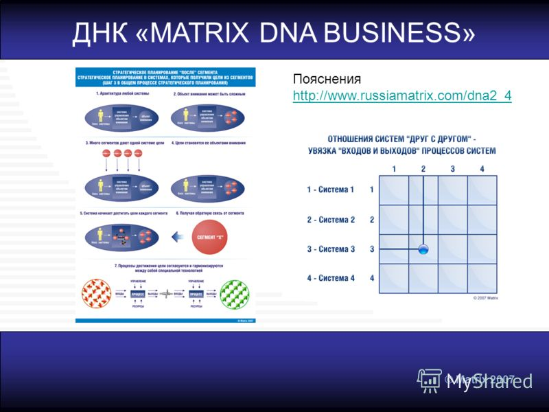 © Matrix 2007 ДНК «MATRIX DNA BUSINESS» Пояснения http://www.russiamatrix.com/dna2_4