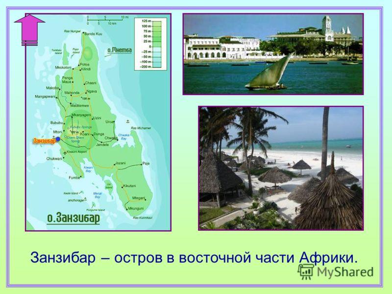 Занзибар – остров в восточной части Африки.