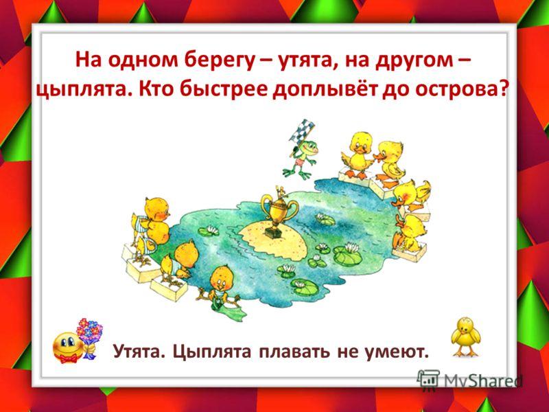На одном берегу – утята, на другом – цыплята. Кто быстрее доплывёт до острова? Утята. Цыплята плавать не умеют.