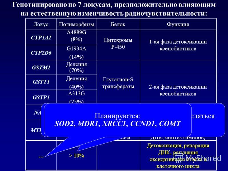 Генотипировано по 7 локусам, предположительно влияющим на естественную изменчивость радиочувствительности: ЛокусПолиморфизмБелокФункция CYP1A1 A4889G (8%) Цитохромы P-450 1-ая фаза детоксикации ксенобиотиков CYP2D6 G1934A (14%) GSTM1 Делеция (70%) Гл