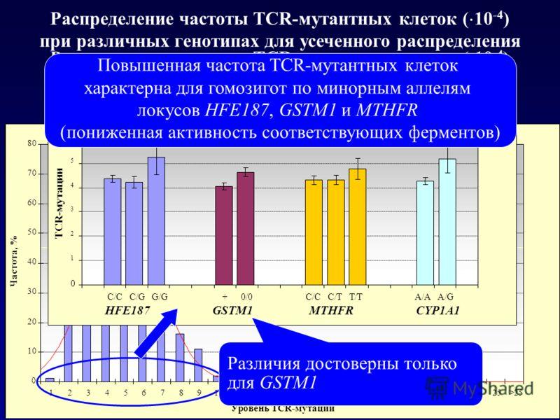 Распределение частоты TCR-мутантных клеток ( 10 -4 ) при различных генотипах для усеченного распределения Распределение частоты TCR-мутантных клеток ( 10 -4 ) без аномально высоких значений (более 3 ) Повышенная частота TCR-мутантных клеток характерн