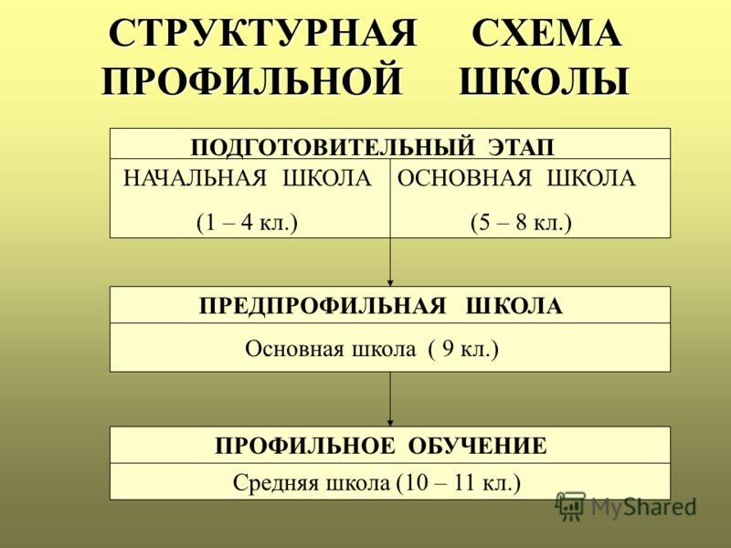 СТРУКТУРНАЯ СХЕМА ПРОФИЛЬНОЙ ШКОЛЫ ПОДГОТОВИТЕЛЬНЫЙ ЭТАП НАЧАЛЬНАЯ ШКОЛА (1 – 4 кл.) ОСНОВНАЯ ШКОЛА (5 – 8 кл.) ПРЕДПРОФИЛЬНАЯ ШКОЛА Основная школа ( 9 кл.) ПРОФИЛЬНОЕ ОБУЧЕНИЕ Средняя школа (10 – 11 кл.)
