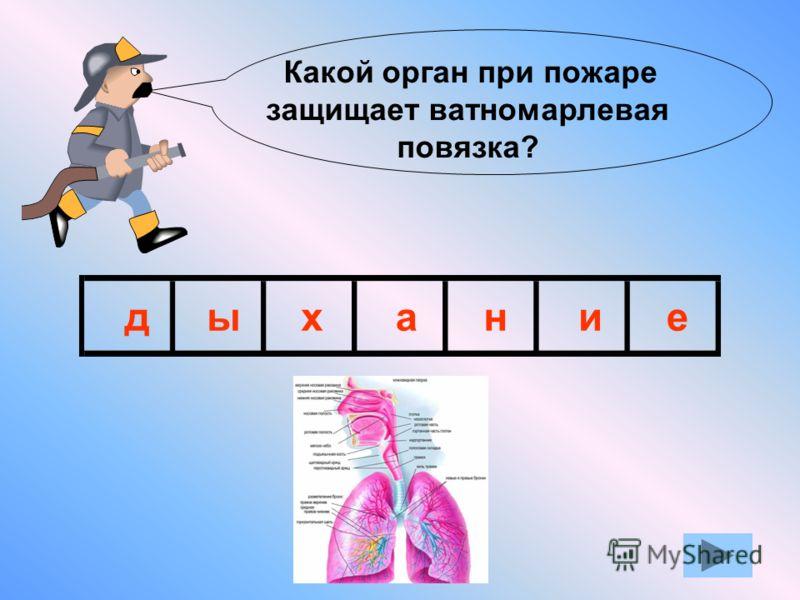 Если вы не можете отгадать сразу всё слово, то отгадывайте по буквам. Для этого кликните кнопкой мыши и откроется первая буква. Таким способом можно открыть первые три буквы. Затем откроется всё слово.
