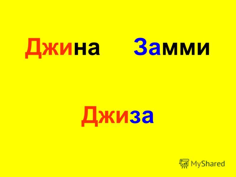 Джина Замми Джиза