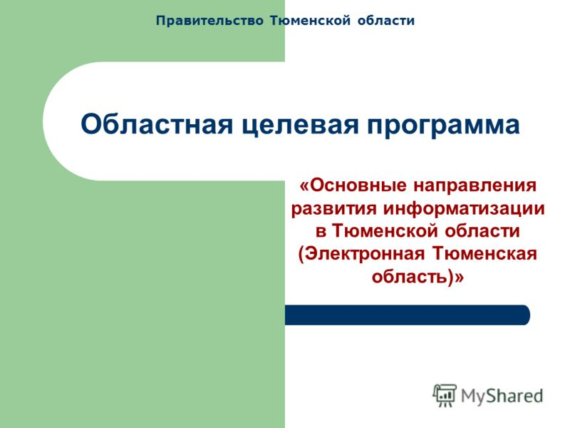 Областная целевая программа «Основные направления развития информатизации в Тюменской области (Электронная Тюменская область)» Правительство Тюменской области
