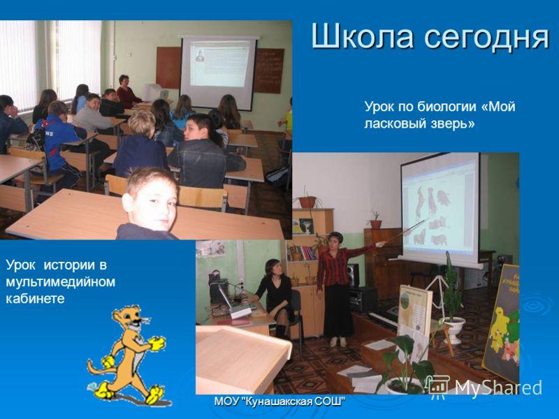 МОУ Кунашакская СОШ Школа сегодня Урок истории в мультимедийном кабинете Урок по биологии «Мой ласковый зверь»