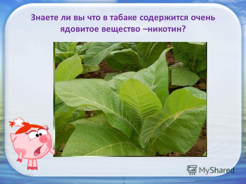 Знаете ли вы что в табаке содержится очень ядовитое вещество –никотин? 25.11.20123