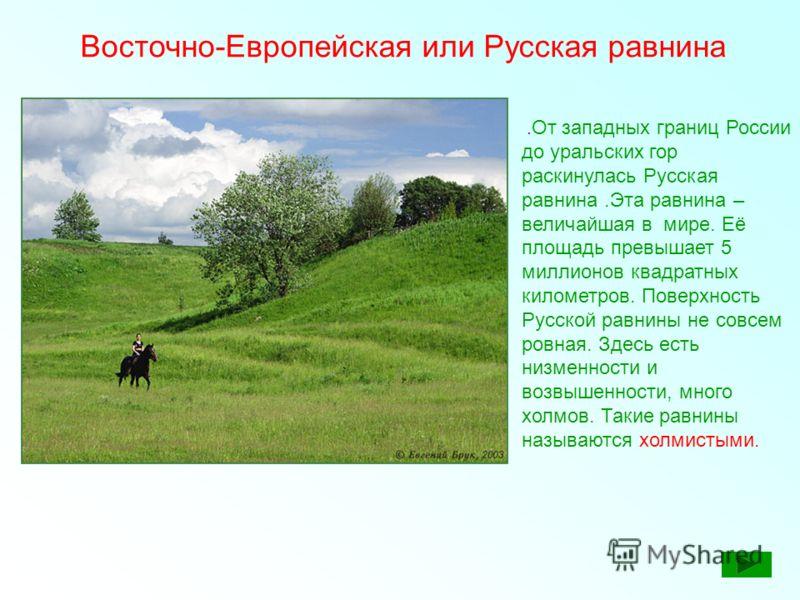 Восточно-Европейская или Русская равнина. От западных границ России до уральских гор раскинулась Русская равнина.Эта равнина – величайшая в мире. Её площадь превышает 5 миллионов квадратных километров. Поверхность Русской равнины не совсем ровная. Зд