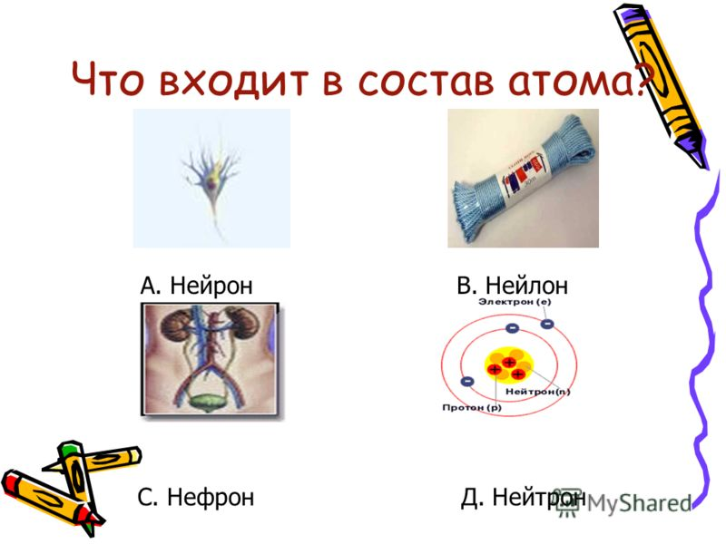 Что входит в состав атома? А. Нейрон В. Нейлон С. НефронД. Нейтрон