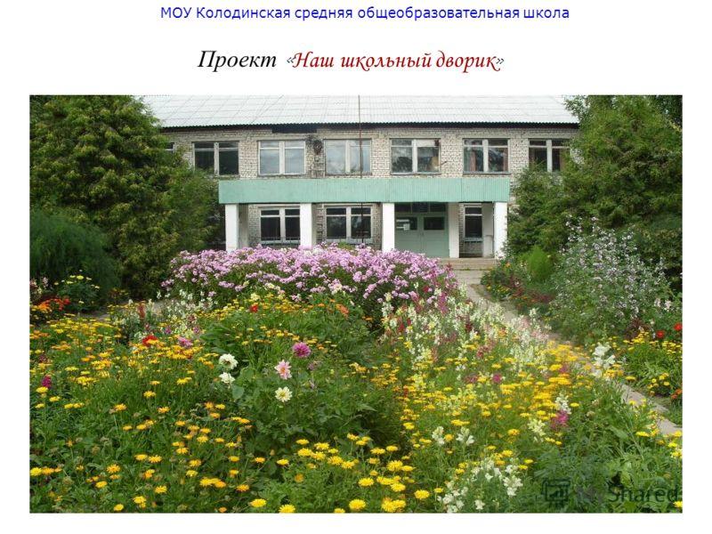 МОУ Колодинская средняя общеобразовательная школа Проект « Наш школьный дворик »