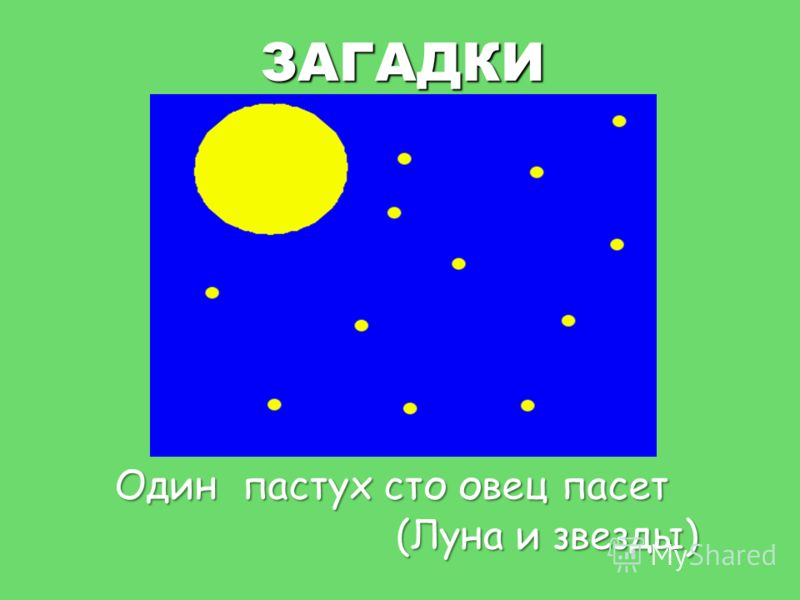 ЗАГАДКИ Один пастух сто овец пасет (Луна и звезды)
