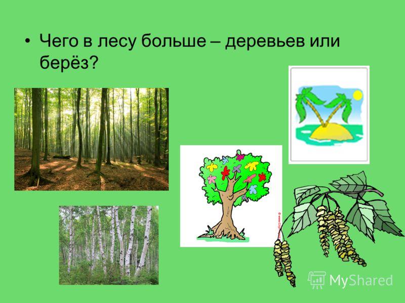 Чего в лесу больше – деревьев или берёз?