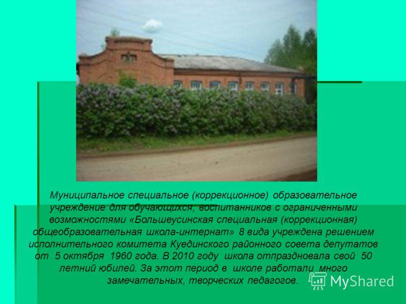Муниципальное специальное (коррекционное) образовательное учреждение для обучающихся, воспитанников с ограниченными возможностями «Большеусинская специальная (коррекционная) общеобразовательная школа-интернат» 8 вида учреждена решением исполнительног
