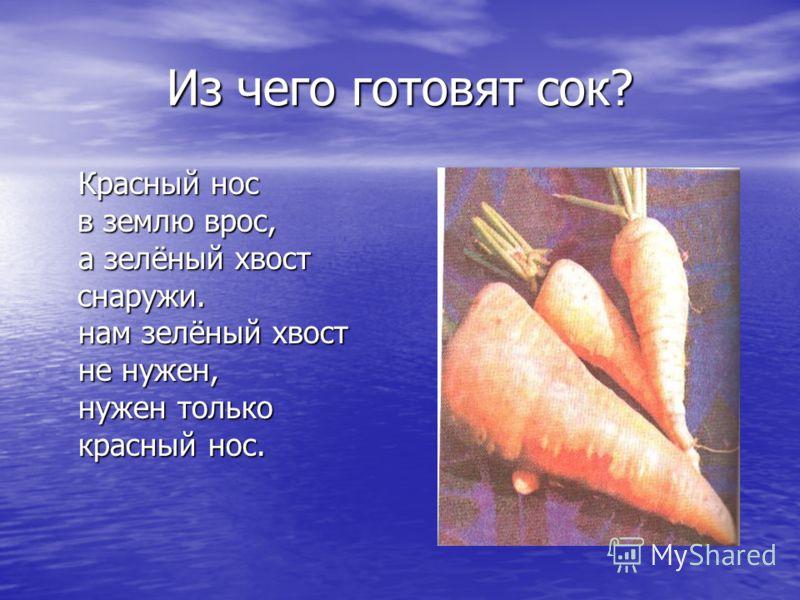 Из чего готовят сок? Красный нос в землю врос, в землю врос, а зелёный хвост снаружи. снаружи. нам зелёный хвост не нужен, нужен только красный нос.