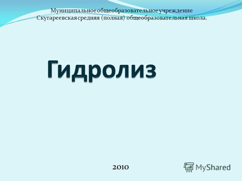 2010 Муниципальное общеобразовательное учреждение Скугареевская средняя (полная) общеобразовательная школа.