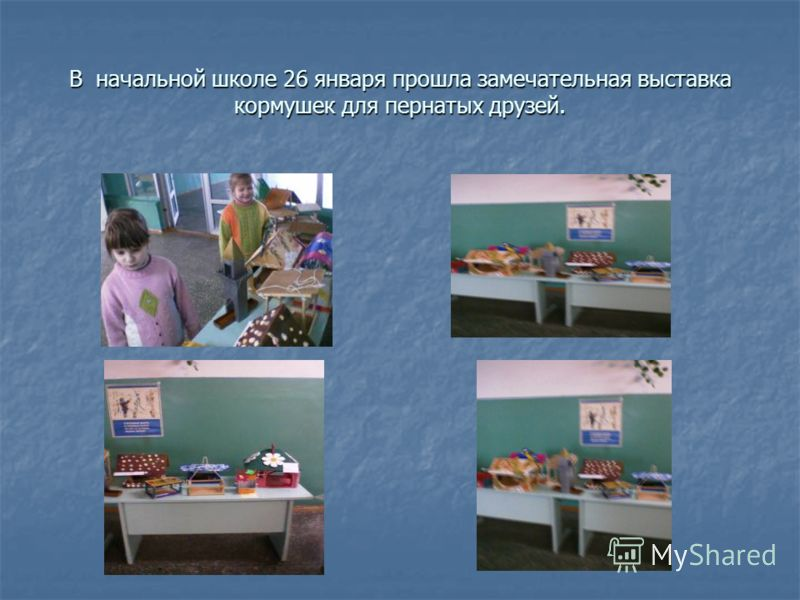В начальной школе 26 января прошла замечательная выставка кормушек для пернатых друзей.