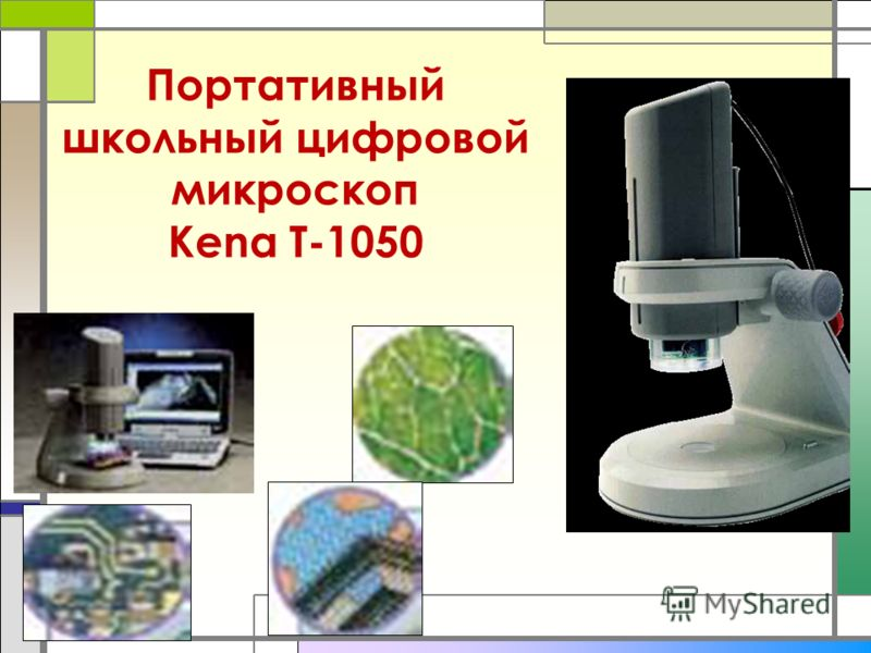 Портативный школьный цифровой микроскоп Kena T-1050