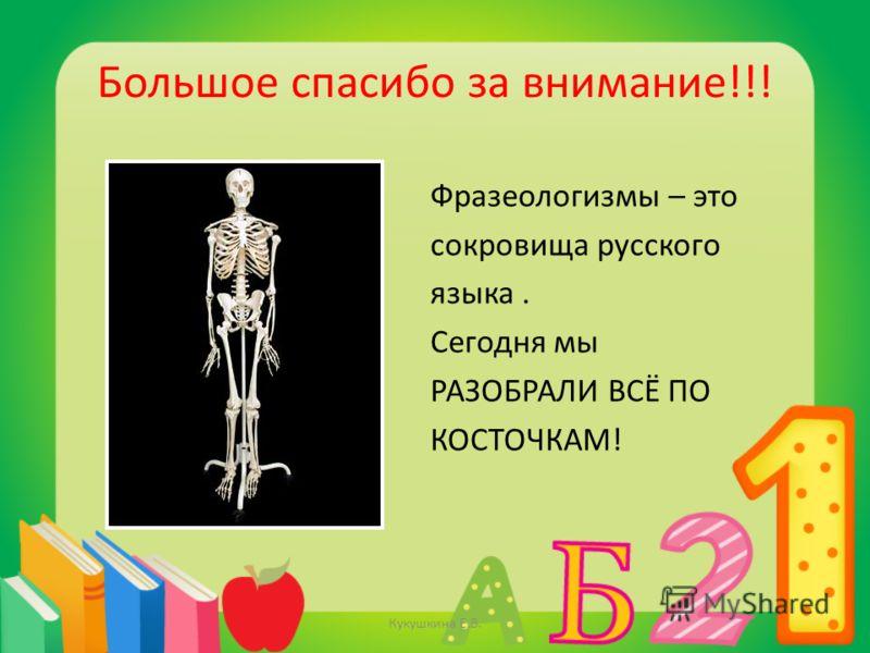 Большое спасибо за внимание!!! Фразеологизмы – это сокровища русского языка. Сегодня мы РАЗОБРАЛИ ВСЁ ПО КОСТОЧКАМ! Кукушкина Е.В.