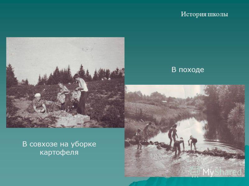 История школы В совхозе на уборке картофеля В походе