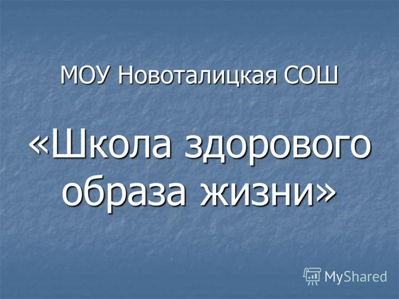 МОУ Новоталицкая СОШ «Школа здорового образа жизни»
