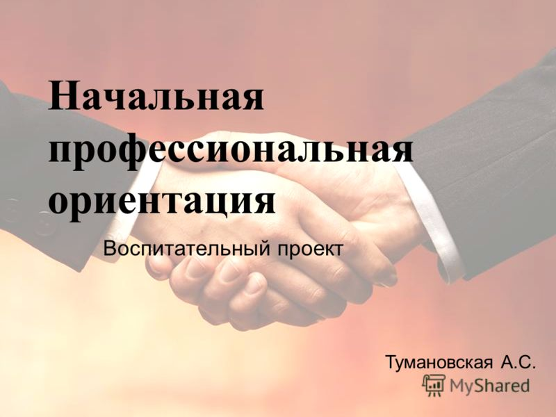 Начальная профессиональная ориентация Воспитательный проект Тумановская А.С.