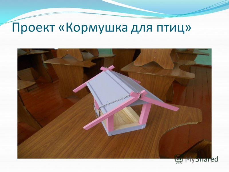 Проект «Кормушка для птиц»