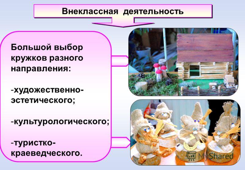 Внеклассная деятельность Большой выбор кружков разного направления: -художественно- эстетического; -культурологического; -туристко- краеведческого.