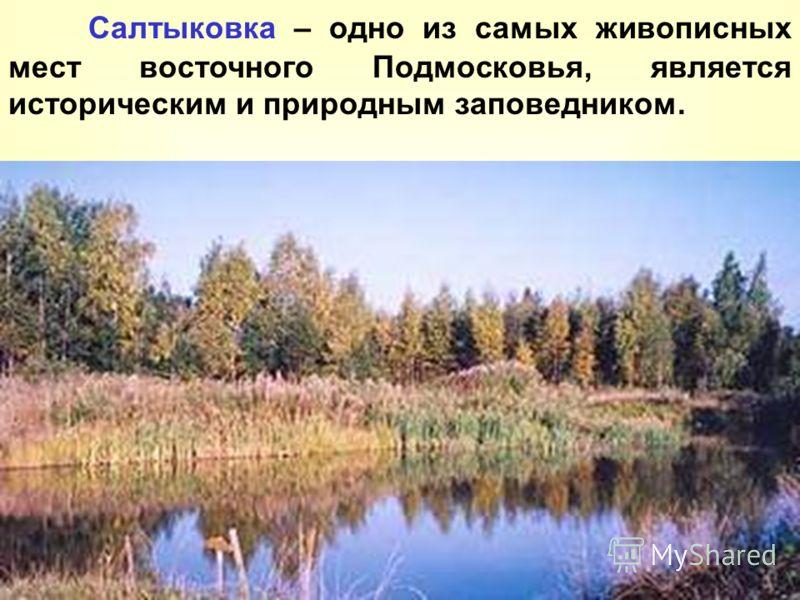 Салтыковка – одно из самых живописных мест восточного Подмосковья, является историческим и природным заповедником.