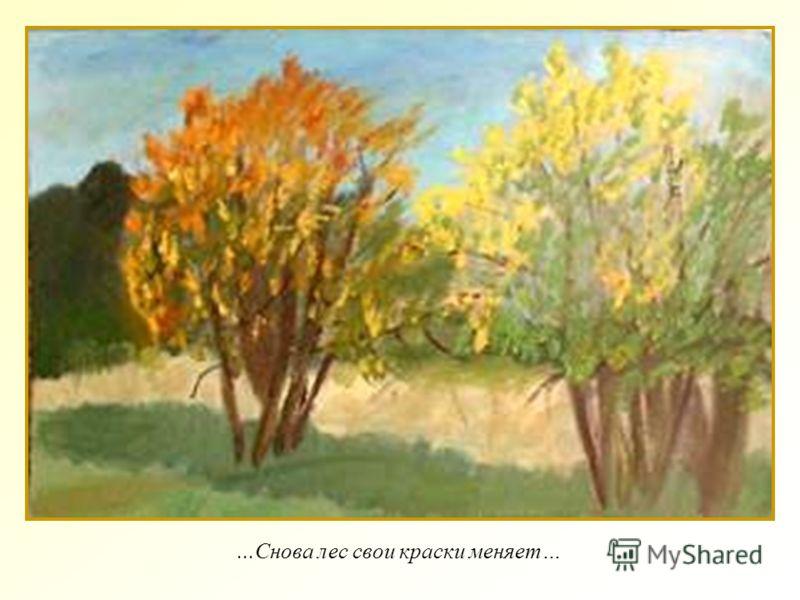 ...Снова лес свои краски меняет…