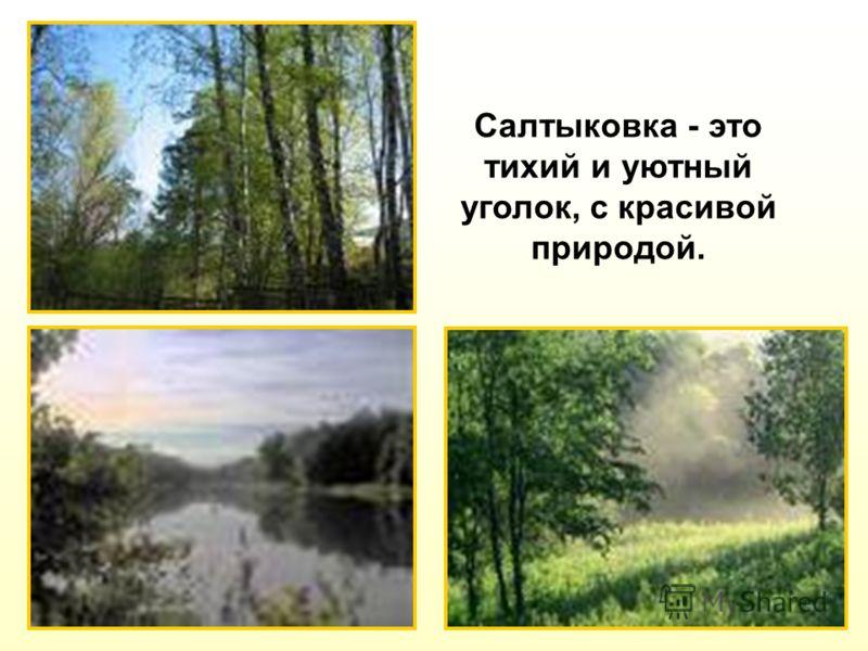 Салтыковка - это тихий и уютный уголок, с красивой природой.