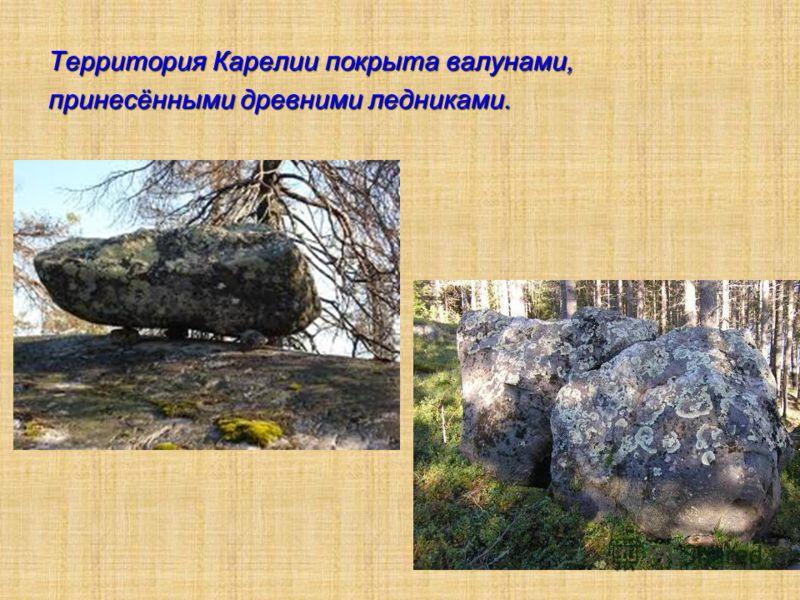 Территория Карелии покрыта валунами, принесёнными древними ледниками.