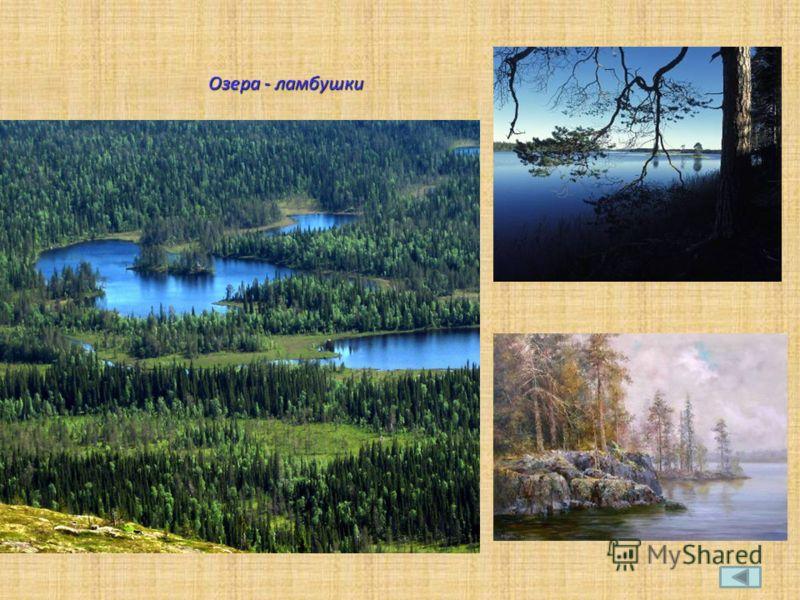 Озера - ламбушки