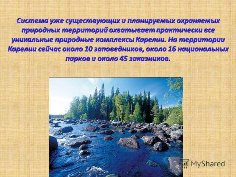 Система уже существующих и планируемых охраняемых природных территорий охватывает практически все уникальные природные комплексы Карелии. На территории Карелии сейчас около 10 заповедников, около 16 национальных парков и около 45 заказников.