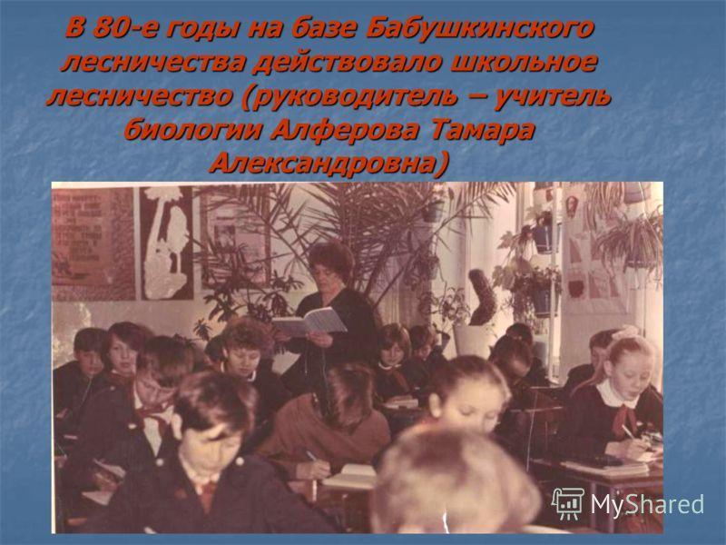В 80-е годы на базе Бабушкинского лесничества действовало школьное лесничество (руководитель – учитель биологии Алферова Тамара Александровна)