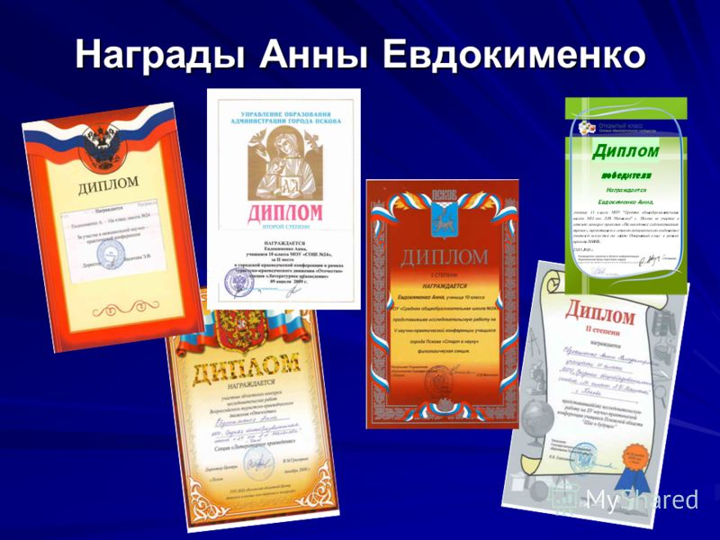 Награды Анны Евдокименко