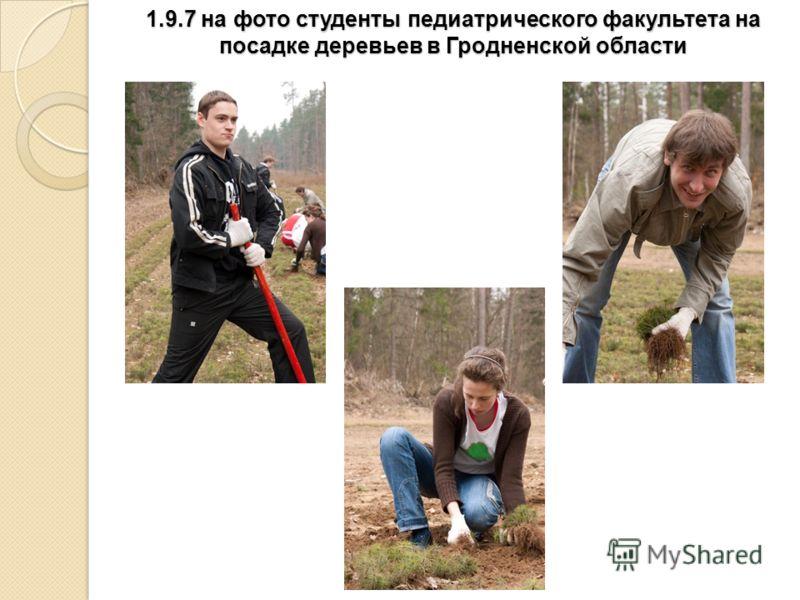 1.9.7 на фото студенты педиатрического факультета на посадке деревьев в Гродненской области