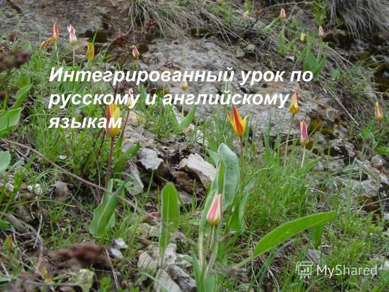 Интегрированный урок по русскому и английскому языкам