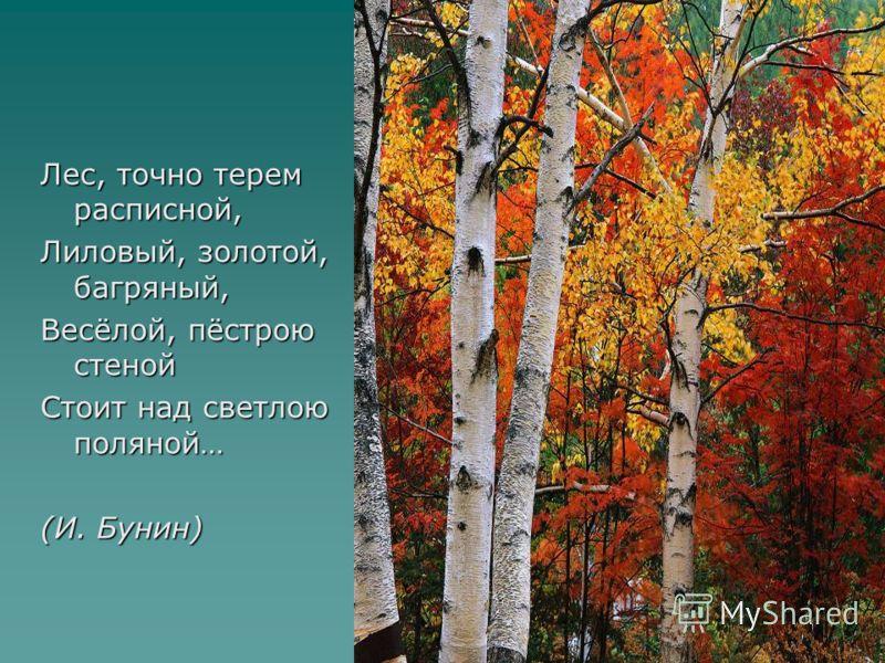 Лес, точно терем расписной, Лиловый, золотой, багряный, Весёлой, пёстрою стеной Стоит над светлою поляной… (И. Бунин)