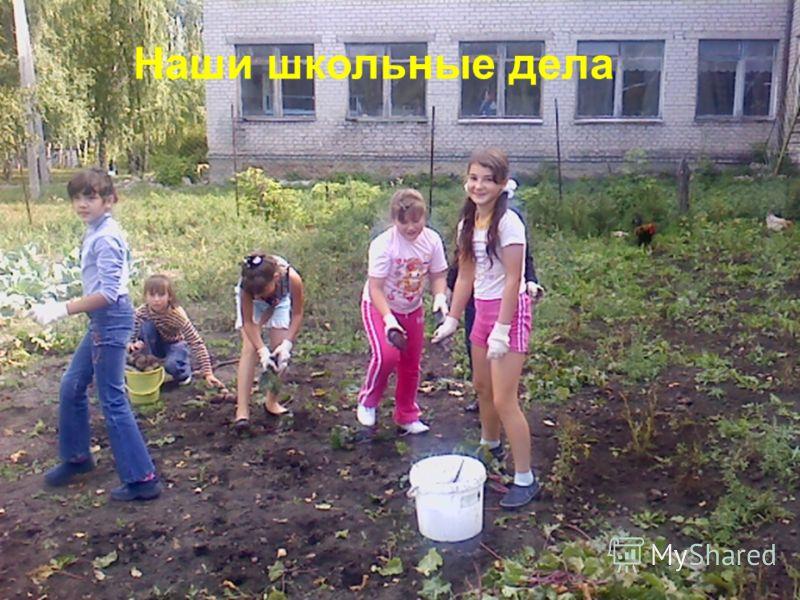 Наши школьные дела